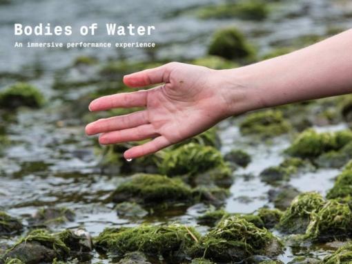 Bodies of Water / A collaboration between Saffy Setohy, Aya Kobayashi, Joanna Young, Nicolette Mcleod